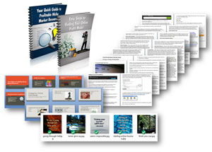 1-Start-your-online-business-PLR