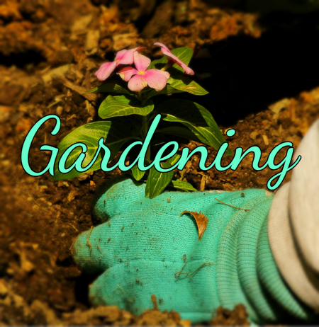 Get a Head Start on Spring with this Gardening PLR Special