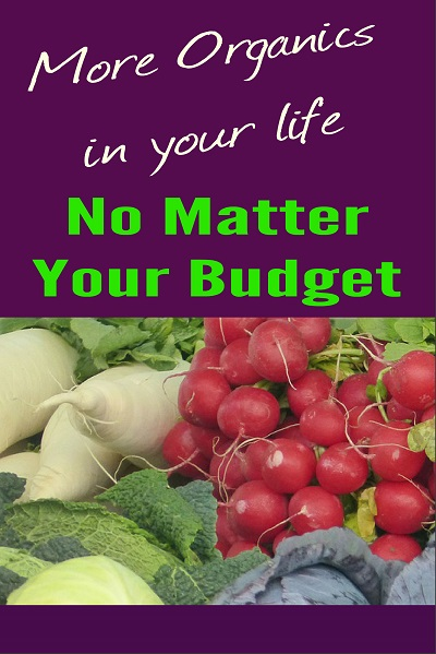 [Health / Food PLR]  Organic on a Budget Report, Ecover, Tweets