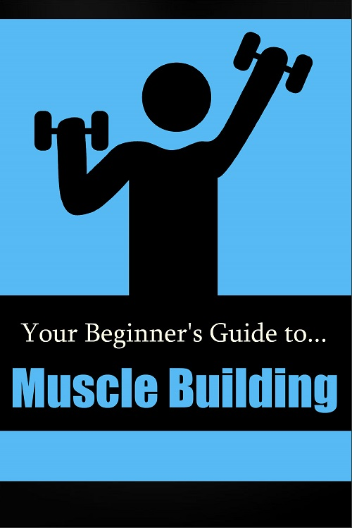 New Fitness PLR: Beginner's Guide to Muscle Building