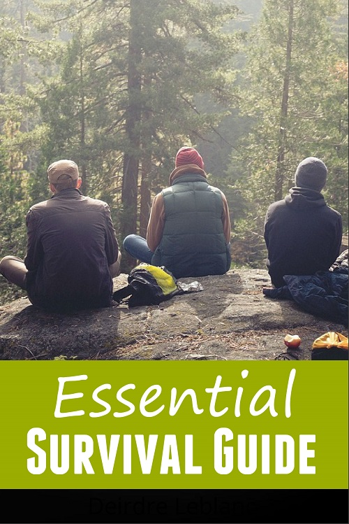 Essential Survival Guide – PLR Report – Step-by-Step Tutorials
