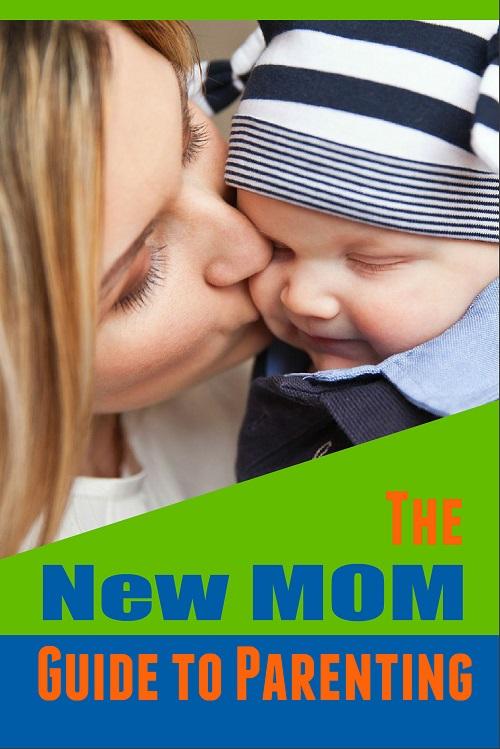 Mom Parenting PLR Ecover
