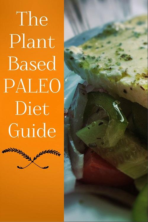 Plant based paleo PLR diet ecover