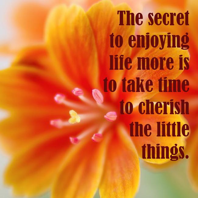 Enjoy life more - quote