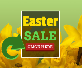 10 Easter PLR Articles – 50% Off Ending Soon