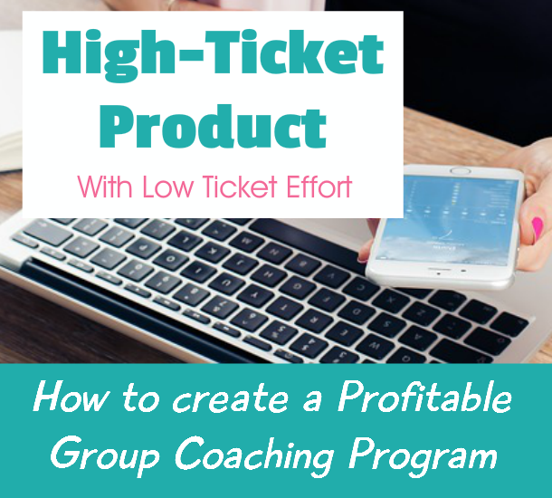 New High Ticket Product / Coaching PLR