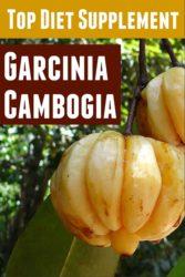 Diet PLR – Garcinia Cambogia