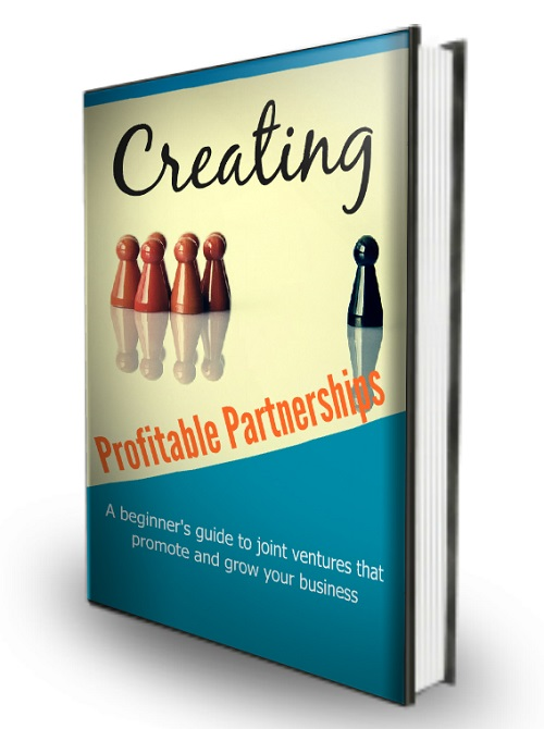 profitable-partnerships-ecover-3d