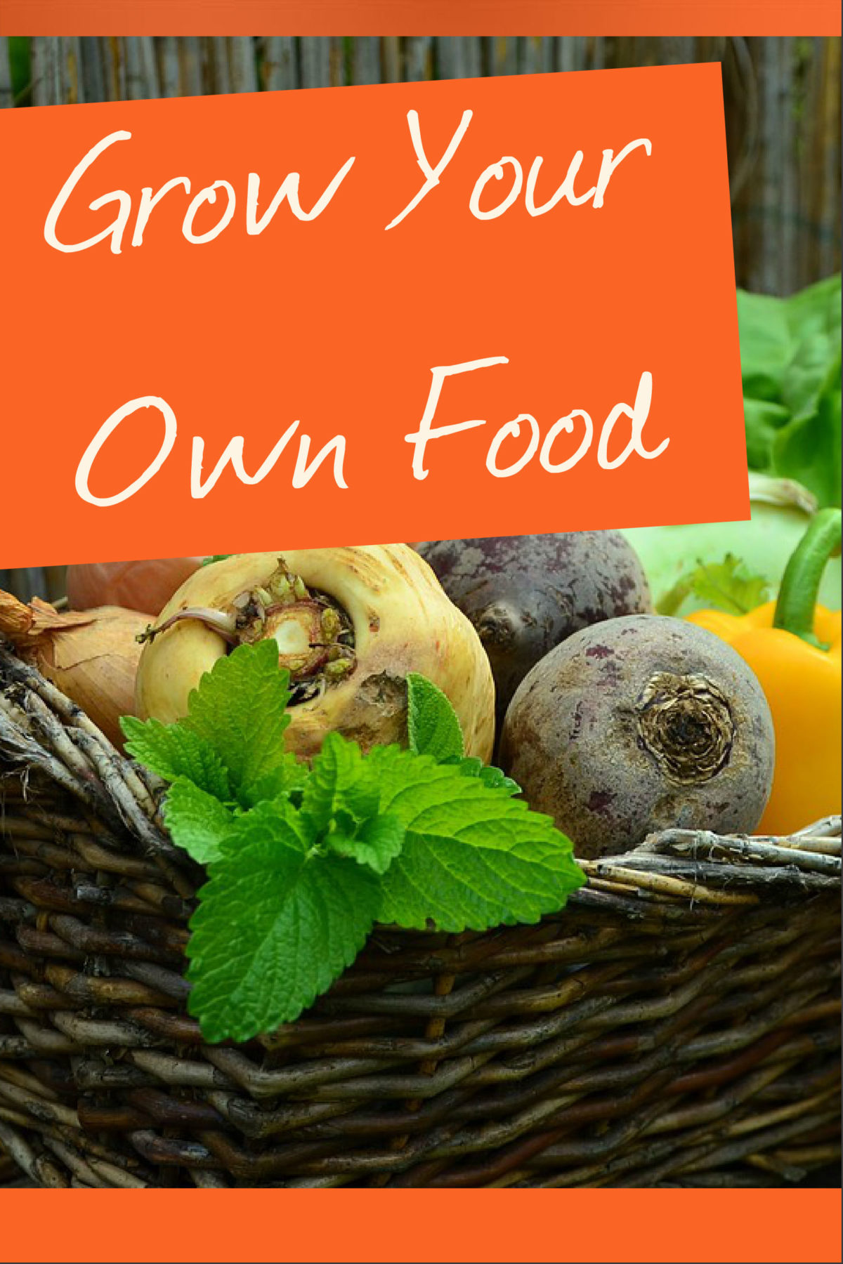 Grow Your Own Food – Gardening PLR Content