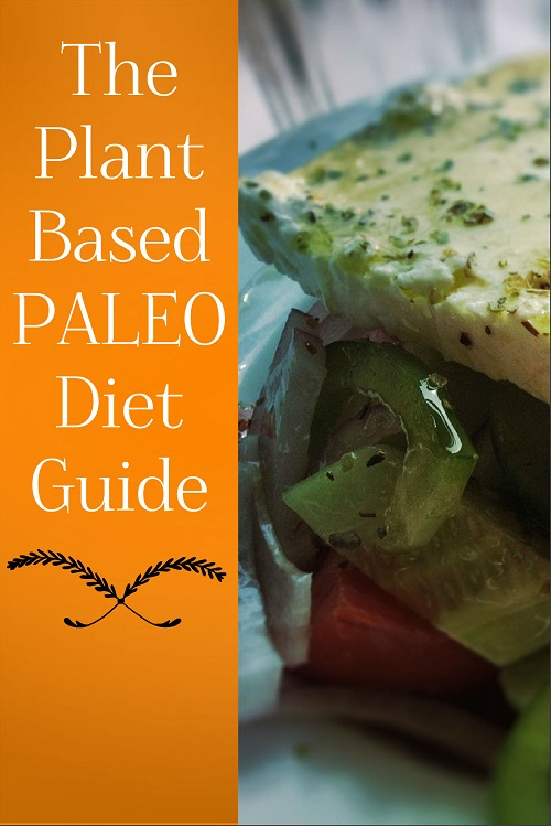 Plant-Based Paleo PLR Diet Guide – Early Bird Pricing