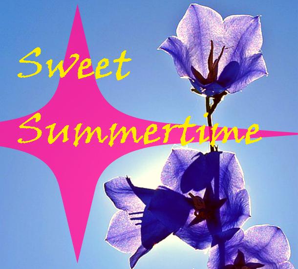 Summertime PLR Deals Starting… June 2016 First Week